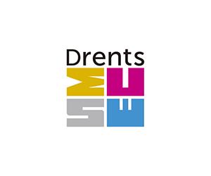 DrentsMuseum_logo_pong_li